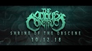 THE ODIOUS CONSTRUCT Shrine of the Obscene 2018 Teaser
