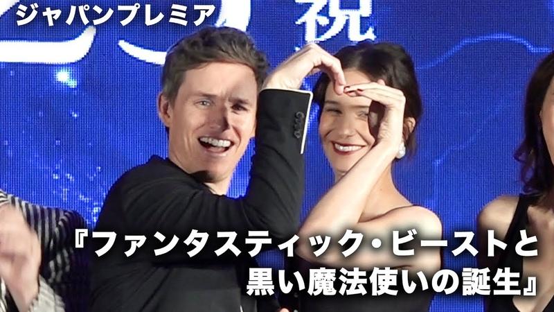 エディ・レッドメインらファンタビキャストが日本に集結!映画『フ 12449