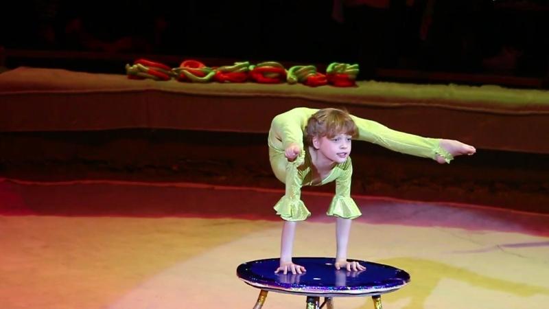 Цирковая студия Алиса - Ящерица