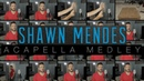Shawn Mendes ACAPELLA Medley - In My Blood, Stitches, Lost in Japan, Mercy and MORE!