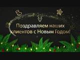 Поздравление с Новым 2019 годом от Спорт-Арены МУРАВЕЙ
