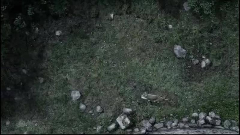 Caida de Bran Stark Juego de Tronos Español HD