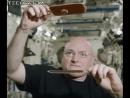 Космический пинг-понг со Скоттом Келли
