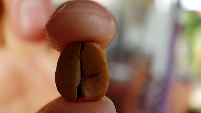 НашаНиша - Вьетнам.Самый дорогой кофе