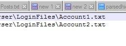Рис. 2. Заполнение файла с базой данных аккаунтов.