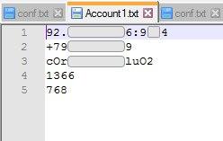 Рис. 3. Файл данных отдельного аккаунта.