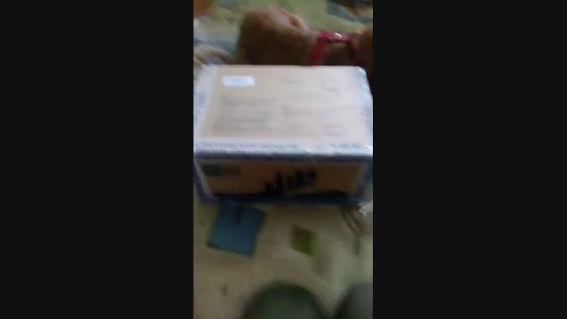 распаковка посылки от Тайного Санты