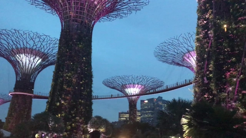 Сингапур футуристические сады
