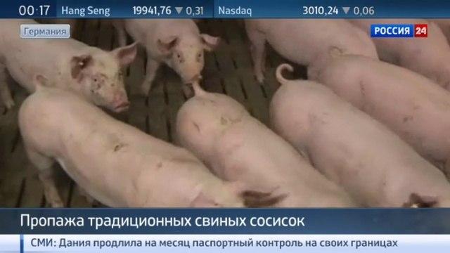 Новости на «Россия 24» • Германия лишилась свиных сосисок из-за мигрантов