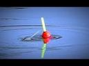 Рыбалка на крупного карася. Чеснок рулит! Экстремальная рыбалка в сезон мошки. Рыбалка на поплавок.