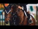 Happier Equestrian Motivation
