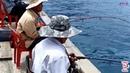 Câu cá thư giãn trên biển nhật ký đi biển 8