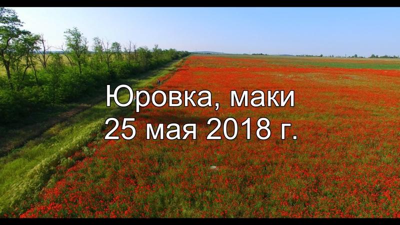 Анапа пос. Юровка, маки! 25 мая 2018 г.