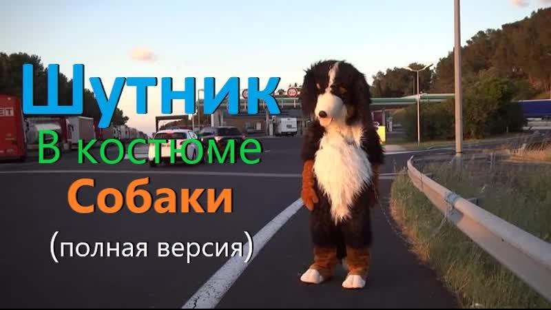Shere.Khan - Шутник в костюме собаки