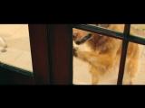 Marshmello ft. Bastille - Happier (Official Music Video)_Full-HD.mp4