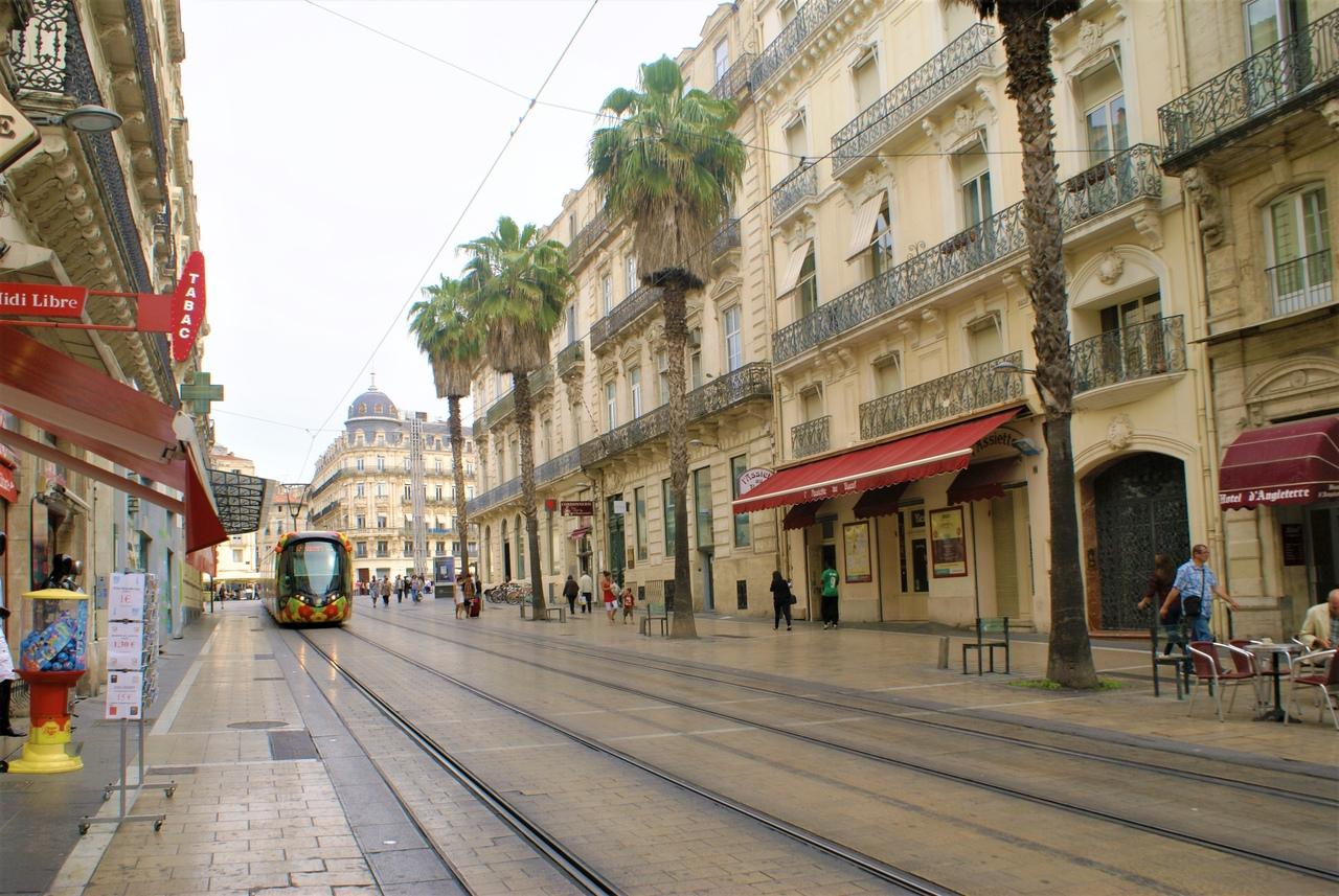 Монпелье - маленький Париж Монпелье, город, города, очень, собака, Пейру, центр, площади, Комедии, Кроме, находится, XVIII, можно, только, кроме, весьма, здание, особняков, недалеко, музей