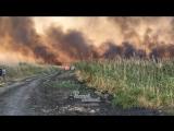 Пожар в полях на Западном 28.8.2018 Ростов-на-Дону Главный