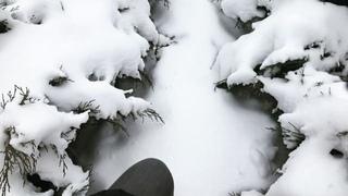 valentina_biriukova video