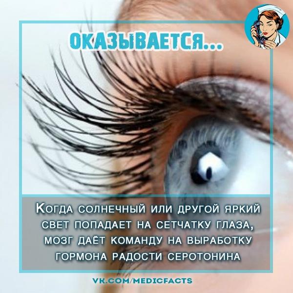 https://pp.userapi.com/c845017/v845017610/b1883/LokBvru9XJY.jpg