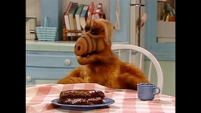 Alf Quote Season 2 Episode 14_Туфли