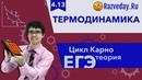 4 13 Термодинамика Цикл Карно ЕГЭ по физике