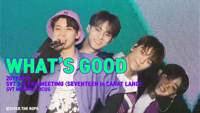 [FANCAM] [190310] SEVENTEEN (세븐틴) - What's Good (Mingyu focus) @ 3rd Fanmeeting Seventeen in Carat Land