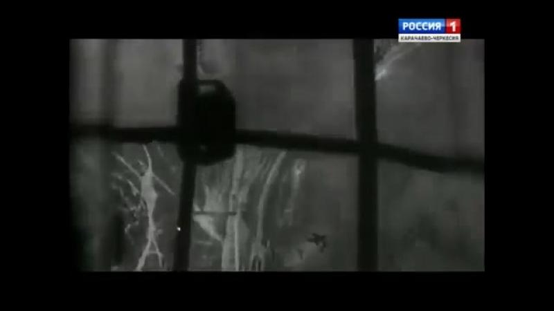 История пограничных войск СССР