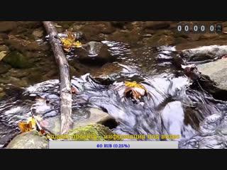 قناة القران الكريم   بث مباشر / Коран / Quran - Live Stream
