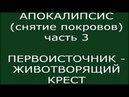 АПОКАЛИПСИС - снятие покровов - ПЕРВОИСТОЧНИК. ЖИВОТВОРЯЩИЙ КРЕСТ - БОГ И БОГИНЯ