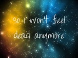 Owl City ~ Plant Life with lyrics