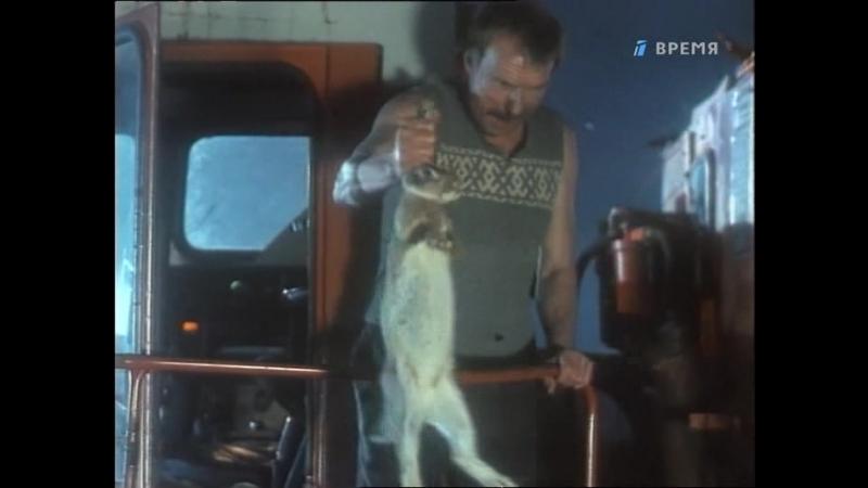 ORT.Sotsialnaya.reklama.Russkij.proekt.05.(1.sezon.5.serija.iz.9).Do.dozhdya.uberem.1995.XviD.TVRip