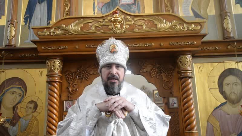 Проповедь митрополита Савватия в Неделю 34-ю по Пятидесятнице, по Богоявлению