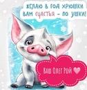 Олег Рой фото #38