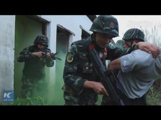 Вот как тренируется вооруженная полиция провинции Юньнань