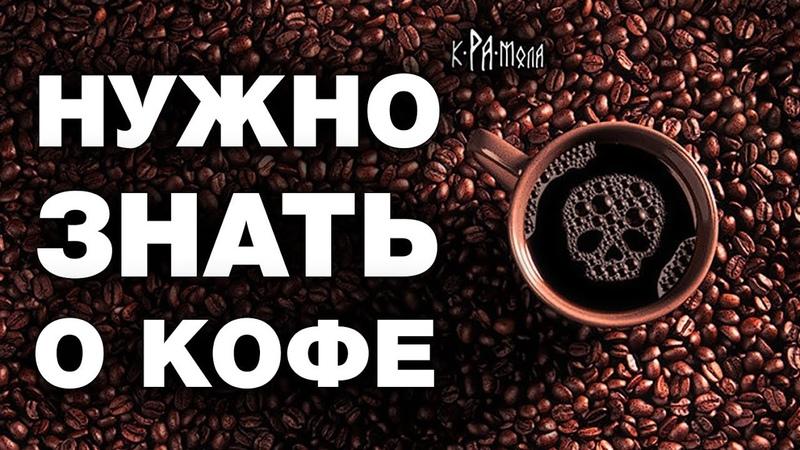 Факты о кофе которых не расскажут продавцы Польза или вред