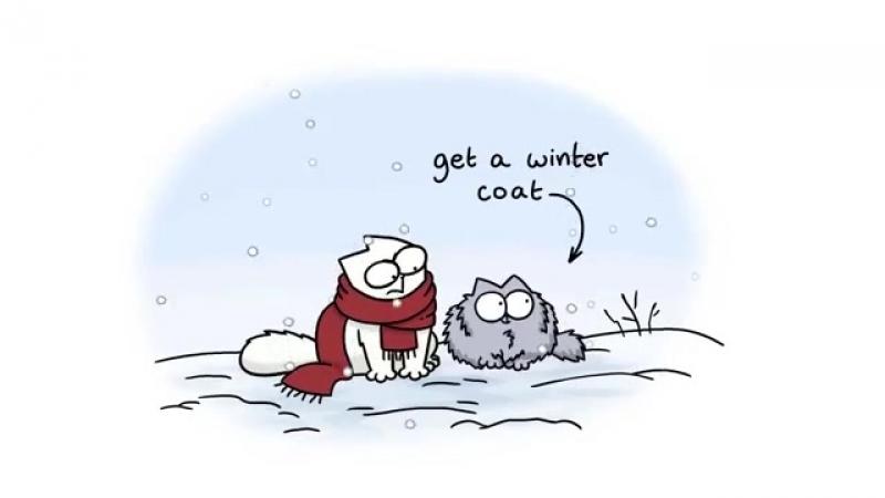 Кот Саймона_ руководство к зиме в цвете