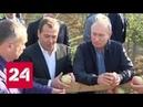 Путину и Медведеву показали на Ставрополье яблоневые сады - Россия 24