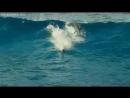 Wikarnyj_relaks_Krasivyj_Okean_delfiny_-spcs.me.mp4