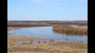 Весенний паводок 2018 года в городском округе Луховицы