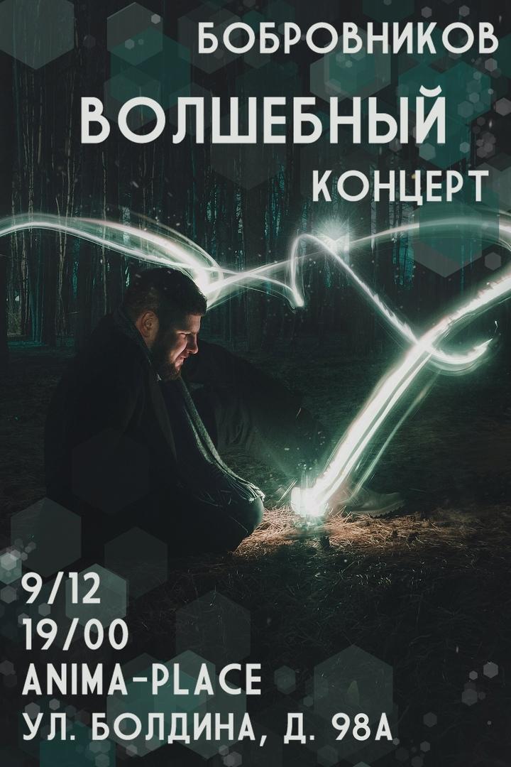 Афиша Тула Бобровников / Тула / 9.12 / Волшебный концерт