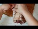 Ветчина из рульки цыганка готовит, дёшево и сердито. Gipsy cuisine..mp4