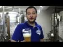 Дегустация нового сорта пива
