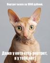 Дмитрий Большаков фото #12