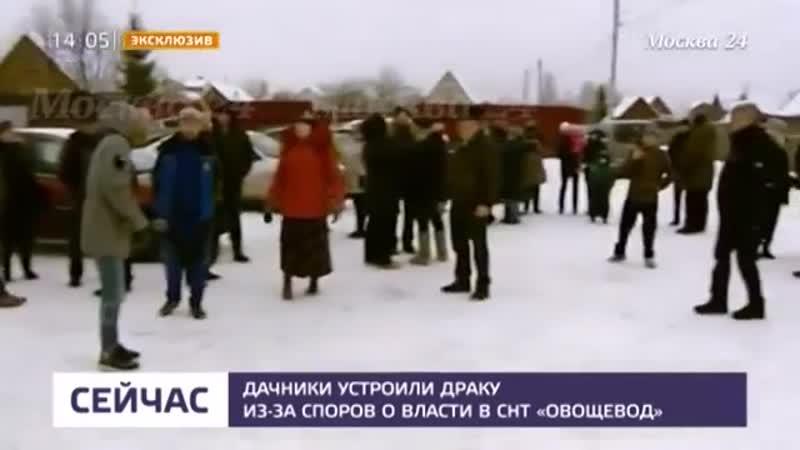 Дачники устроили драку из-за спора о власти в СНТ в Подмосковье - Москва 24 (online-video-cutter.com)