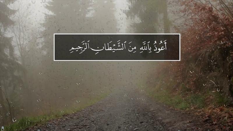 Salman Al-Utaybi. Сура 24 Ан-Нур (Свет), аяты 30-31
