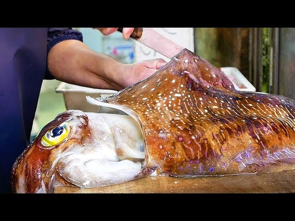 Japanese Street Food - GIANT CUTTLEFISH Sashimi Seafood Okinawa Japan