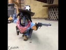 Шериф на задании