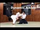 Dynamic and Fluid Aikido with Toshihito Saotome Part III