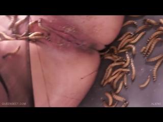 Queensnake - Aliens (Tanita)