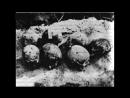 6 кровавых палачей НКВД СССР.mp4